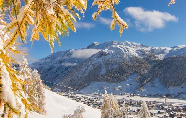 Livigno town and snow covered trees