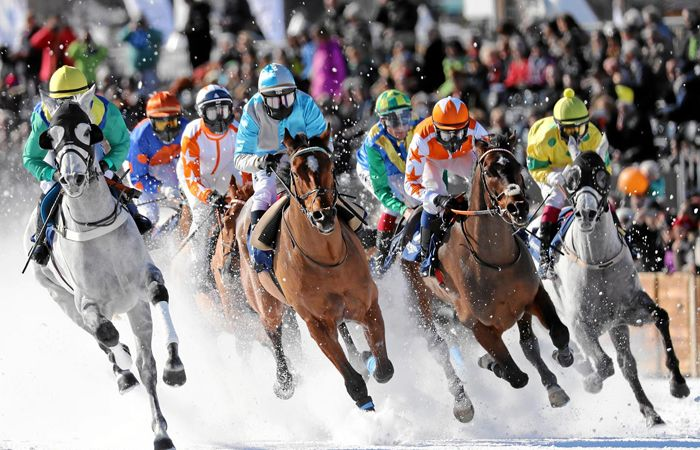White-Turf-International-Racing